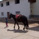 ペルーの気候とベストシーズン