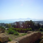チュニジアの世界遺産:カルタゴ遺跡 観光・旅行情報まとめ