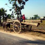 インド観光・旅行での入国とビザ申請・取得方法