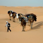 チュニジアの気候とベストシーズンと渡航情報