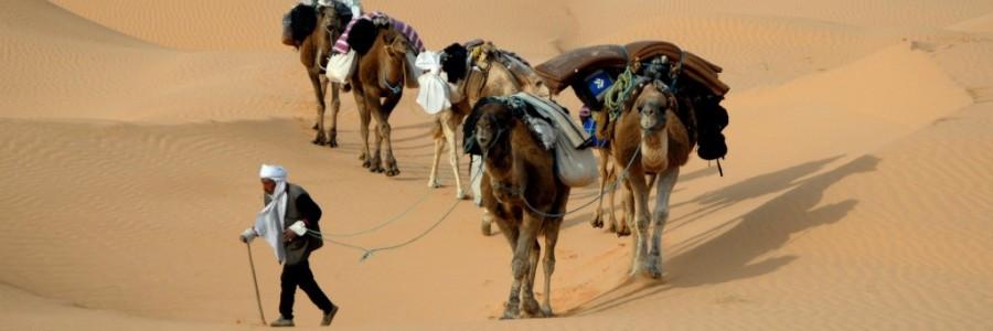 チュニジア旅行・観光の気候とベストシーズン