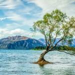 【雨と気温】ニュージーランドの天気・気候の特徴と観光・旅行のベストシーズン