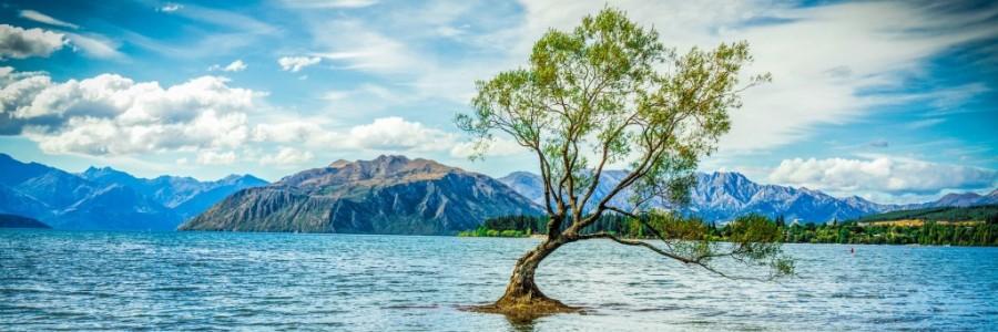 ニュージーランド旅行・観光情報
