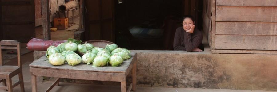 ラオス旅行・観光情報
