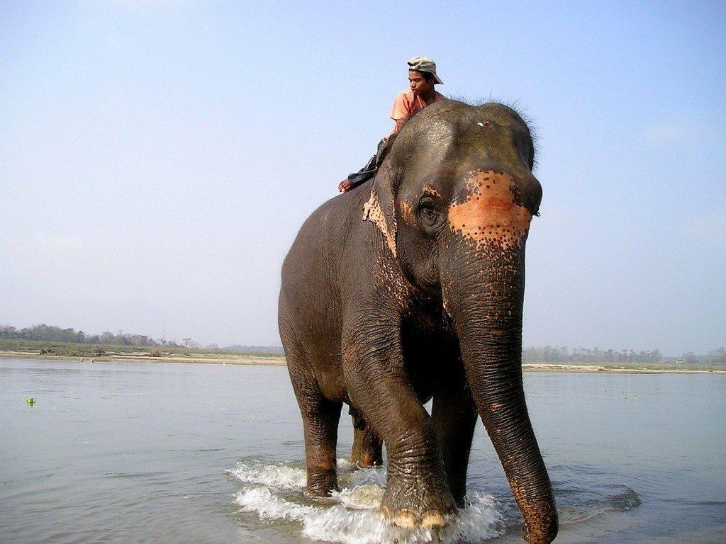 nepal-379_1280