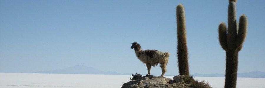 ボリビア旅行・観光の気候とベストシーズン