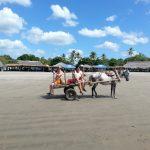 ニカラグアの基本情報-時差、言語、人口、宗教、首都、飲料水など