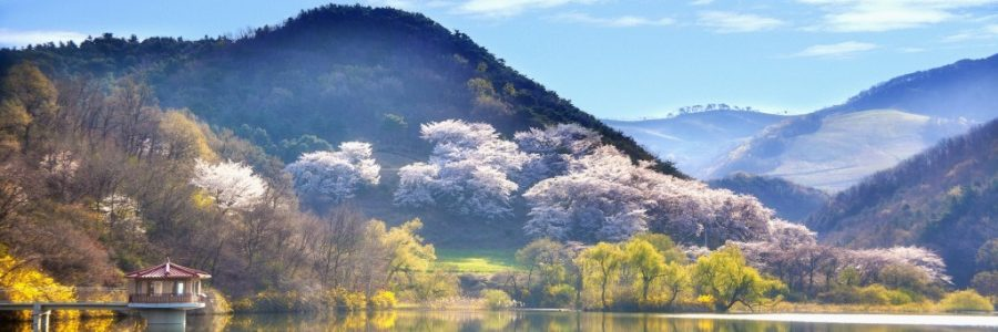 韓国旅行・観光の気候とベストシーズン