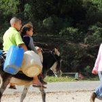 【日本から個人で】カルタゴ遺跡への行き方【チュニジアの世界遺産】