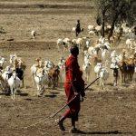 タンザニアへの入国とビザ取得方法