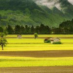 スイスの気候とベストシーズン