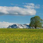 スイスの基本情報-時差、言語、人口、宗教、首都、飲料水など
