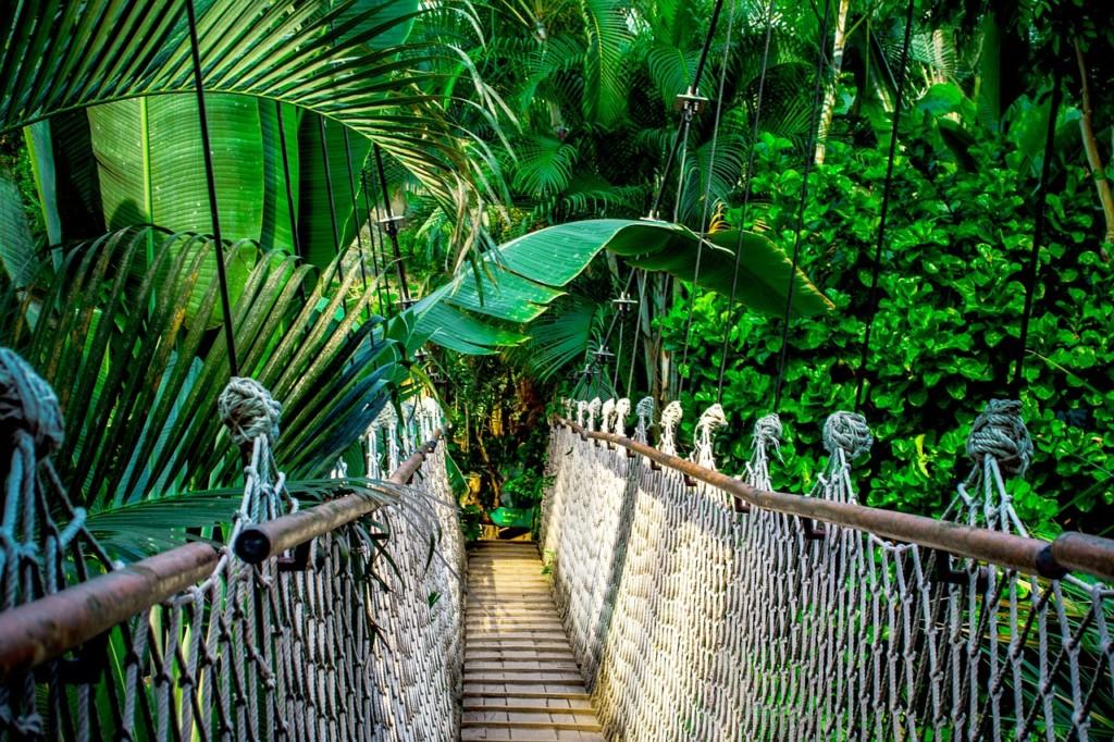 陸路で入国できるタイ〜マレーシアの国境越えのルートと移動手段