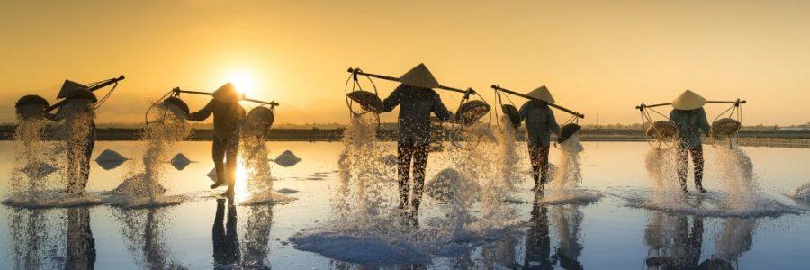 ベトナム旅行・観光情報