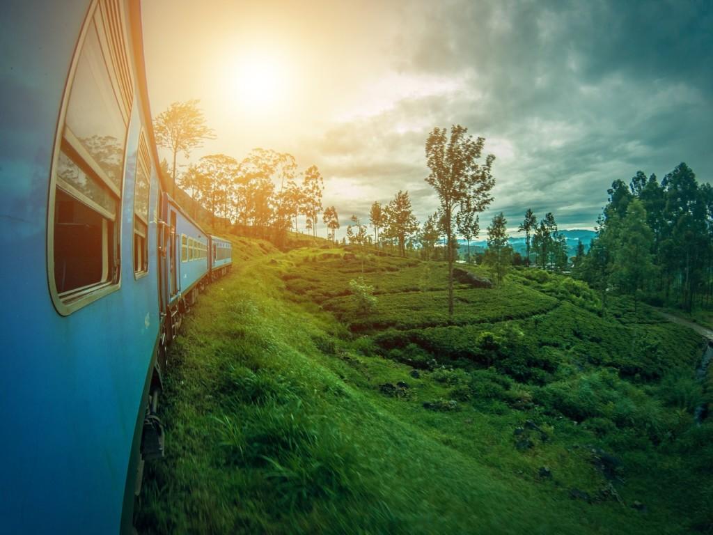 【ありがとう・こんにちは】シンハラ語の挨拶と単語【スリランカの言葉】