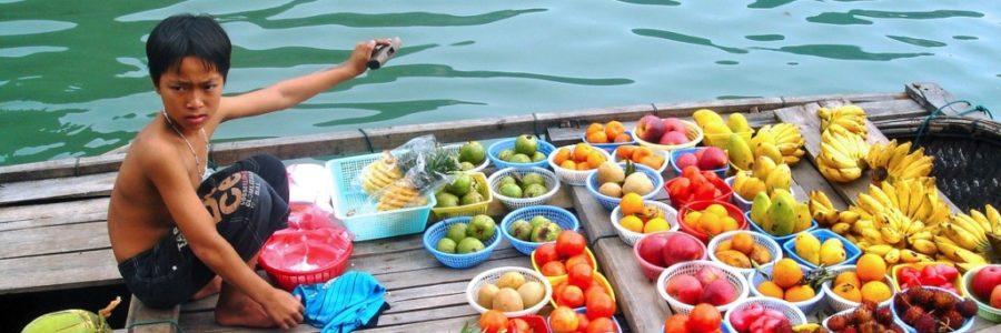 【初心者向け】現地で役立つベトナム旅行・観光情報まとめ【おすすめ】